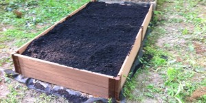 cropped-Filled-Garden-Box1.jpg