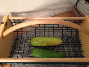 Cucumbers in produce basket