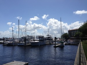 Docks full of boats and yachts in New Bern, NC