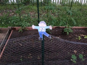 Flat Stanley in the garden