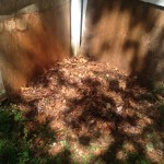 My completed compost pile